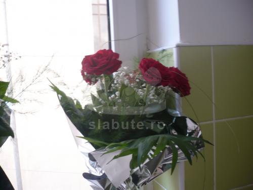 trandafiri rosii de la sotul meu !!