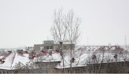 Iarna in poze, Poza 1